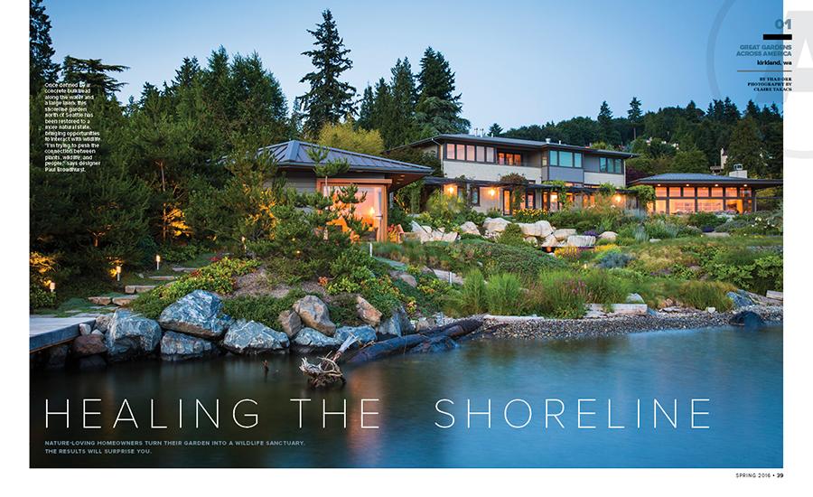 Healing the Shoreline
